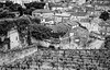 Roofs and Vines (gwpics) Tags: rooftops vineyard roofs stemilion mono vines heritage architecture monochrome french buildings france vine black landscape gironde blackandwhite archive white film leica bw blackwhite
