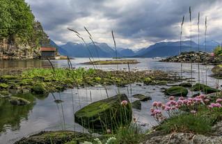 The Hardangerfjord