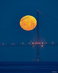Full Moon (davidyuweb) Tags: fullmoon 三藩市 sanfrancisco goldengatebridge luckysnapshot