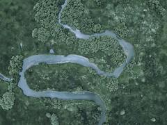 Les méandres du Doubs (kennyovich) Tags: drone franche comté dji water forest aerial vertical doubs france franchecomté