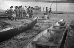 IrianJaya3-204-057b (Stichting Papua Erfgoed) Tags: papuaheritagefoundation stichtingpapuaerfgoed papua irianjaya voormalignederlandsnieuwguinea