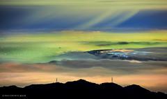在雨裡 (蕭世榮) Tags: 南投縣 大崙山 茶園 銀杏森林 雲海 霧 夜景 fog landscape night 雨