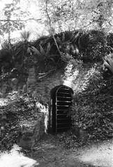 underhill (a.pierre4840) Tags: olympus om4ti zuiko 28mm f28 ilford ilfordhp5 hp5 hp5plus highlights shadow gate door secret enbankment nethercompton dorset holloway england bw blackandwhite monochrome noiretblanc