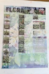 Batanes Flora (Arne Kuilman) Tags: philippines holiday sigma 1770 vakantie filipijnnen batanes island basco flora flowers