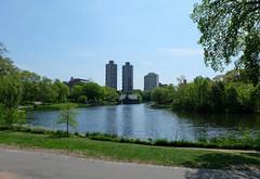New York - Central Park (cinxxx) Tags: america amerika nyc newyork newyorkcity sua stateleunitealeamericii us usa unitedstates unitedstatesofamerica vereinigtestaaten vereinigtenstaatenvonamerika