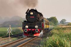 Ol49-59 between Wolsztyn and Nowy Widzim (ThanksDrBeeching) Tags: train railway pociąg kolej zug bahn eisenbahn steam steamengine pkp parowóz ol49 wolsztyn parowozowniawolsztyn widzim nowywidzim kw kolejewielkopolskie 77838 osobowy kw77838