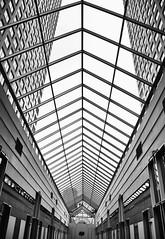 Calgary001_47 (janetliz) Tags: calgary alberta spring roof glassceiling plaza mall