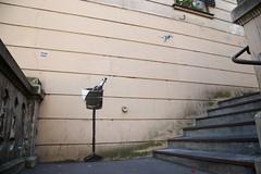 Champagne (OliveTruxi (1 Million views Thks!)) Tags: arturbain banksy paris stencilart streetart streetphotography urbanart urbanphotography france