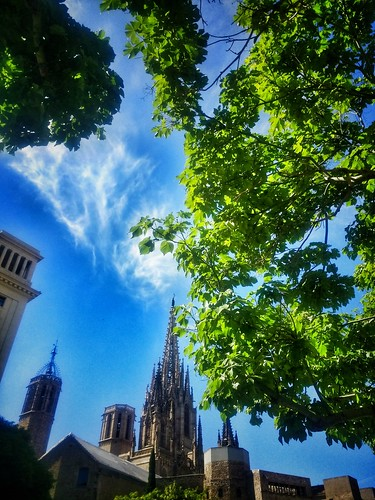 """Barcelona. Catedral • <a style=""""font-size:0.8em;"""" href=""""http://www.flickr.com/photos/26679841@N00/42743511292/"""" target=""""_blank"""">View on Flickr</a>"""