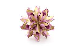 Fritillaria kusudama (ronatka) Tags: kusudama modularorigami mashaathanasiadi rectangle rectangle23 golden pink birthday gift whitebackground ef50mmf18stm inexplore