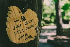 Hotaki Shrine in Sapporo, Hokkaido, Japan