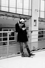 La fille Panda (Paolo Pizzimenti) Tags: ivers yeux projet fille panda bonnet paris paolo olympus zuiko 25mm f18 film pellicule argentique m43 mirrorless dosineau