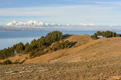 Isla del Sol (RunningRalph) Tags: isladelsol lago lagotiticaca lake laketiticaca meer sunisland titicaca titicacameer departamentodelapaz bolivia bo