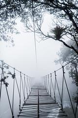 """""""Rumbo desconocido"""" (Alyaz7) Tags: nikond7200 lentenikonnikkorafs1855mm13556giidxvr rawquality misterio mystery niebla fog puente bridge desconocido unknown miedo scary puebla destino"""