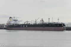Elias Tsakos (frisiabonn) Tags: vehicle ship water england uk britain marine vessel river tees teeside sea shore waterfront maritime boat outdoor large crude oil tanker ten elias tsakos