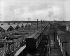 Winnipeg Stock yard [LAC] (vintage.winnipeg) Tags: winnipeg manitoba canada vintage history historic