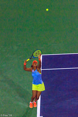 0I7A0480.jpg (Murray Foubister) Tags: 2018 california spring palmsprings usa competition tennis