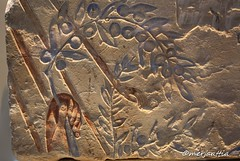 Akhenaten offering to Aten (Merja Attia) Tags: akhenaten akhenatenofferingtoaten aten olivebranch tellelamarna amarnaperiod 18thdynasty newkingdom berlin neuesmuseum amarna amarnaart ancient egypt ancientegypt archaeology egyptology