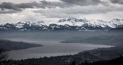 Lake Zurich (dlerps) Tags: daniellerps lerps schweiz sigma sony sonyalpha sonyalphaa77 swiss switzerland zurich zürich lerpsphotography lake lakezurich river alps alpen mountains mountainrange peaks peak snow city dust mist fog misty foggy clouds cloudy zürichsee water