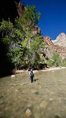Walking Out (donna_0622) Tags: hike narrows zion park water utah nikon d750