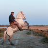 gardian in Camargue #3 (S amo) Tags: camargue france troupeau herd mare jument camarguais horse cheval marais swamp gardian cabrer rear
