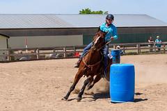 JBC_6293.jpg (Jim Babbage) Tags: krahc bethany appaloosa horses horseshow 2018