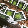 Moldavite ✳️ smells are back in town #Moldavite #incense #Cones #Smells #Scent #Healing Aroma #Senses #Smelling #GoodVibrations #Amplify #Love #Health #Transformation #Wealth #Clearing #Cleansing #Energy #RockShop #LasVegas https://if (mikepiron1) Tags: jewelryandmineral las vegas crystal crystals store shop metaphysical supply healing rock mineral minerals miner collection natural stone