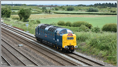 D9009 Alycidon Brumber Hill 17 06 2018 (Mark's Train pictures) Tags: deltic d9009 alycidon brumberhill delticpreservationsociety napier napierdiesel namedlocomotive class55