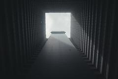 (Panda1339) Tags: 28mm leicaq hk summiluxq 香港 pingshekestate hongkong architecture lookup