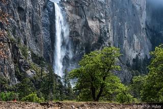 Yosemite  Valley - Bridalveil Fall_5314