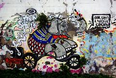 Our Life's a Fvckin' Circvs (nothinginside) Tags: pescara italy italia città city murales murale wall graffiti spray fiume river lungomare riverside lungofiume 2018 circus circvs circo our life fucking elefante elephant animal port pier