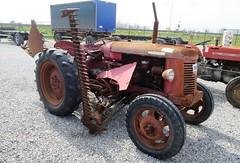 David Brown D 25 (samestorici) Tags: trattoredepoca oldtimertraktor tractorfarmvintage tracteurantique trattoristorici oldtractor veicolostorico d25 30 cropmaster