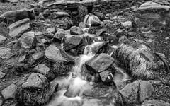 NB-13.jpg (neil.bulman) Tags: countryside longshawestate longexposure peakdistrict nature nationalpark derbyshire longshaw flowingwater rocky water flowing rocks derbyshiredalesdistrict england unitedkingdom gb