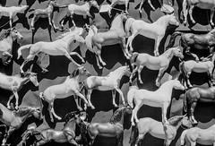 Horses (aweiss.sf) Tags: 5222 alemany alemanyflea analog analogphotography analogue bandw blackwhite doublex eastman film filmisnotdead fleamarket ishootfilm kodak mesuper pentax sanfrancisco