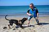 20180408 MARKGRAFENHEIDE (19).jpg (Marco Förster) Tags: dobermann hunde natur markgrafenheide ostsee strand frühling