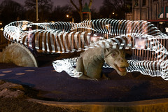 Things that bo Bump in the Night Too (rosepuddle) Tags: dragon lightpainting park playground winnequahpark monona wi dream