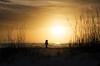 Strolling the Beach (lleon1126) Tags: sunset silhouette strollingthebeach floridabeaches annamariaisland sand sun seagrass evening girlonthebeach
