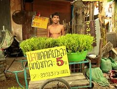 cheap morning glory (the foreign photographer - ฝรั่งถ่) Tags: morning glory vendor cart sign khlong thanon portraits bangkhen bangkok thailand canon