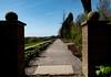 path to... (dorian.blake@btinternet.com) Tags: path pathway sunshine gravel vanishing point leading viewpoint walkway standen