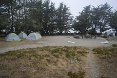DSC08608 (GusTheArtist) Tags: yescoast scrp sonomacounty regionalparks pacificcoast doran doranbeach ocean beach