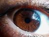 Eye macro (Vyc_Majoris) Tags: eye eyes reflection macro makro lg g2 brown texture