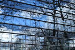 München 1 (blu69) Tags: münchen monaco baviera bayern germany germania azzurro blu riflesso mirror