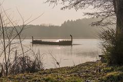 Römerboot am Dechsendorfer Weiher 0652 (Peter Goll thx for +11.000.000 views) Tags: erlangen germany römerboot fau universität dechsendorf weiher lake pond