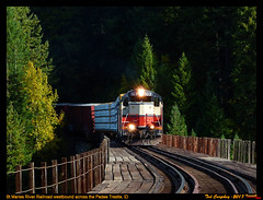 stma-pedee-id-10-9-2017b (funnelfan) Tags: train railroad railway shortline locomotive pnw pacificnorthwest gp9 bridge trestle fall