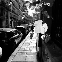 Paris atmosphere in black and white ▪️ ▫️ 🌿 (Yonatan Souid) Tags: paris lemarais blackandwhite street streetphotography love city cityscape streetportrait scenery light shadows france monochrome photography exploration meditation justgoshoot