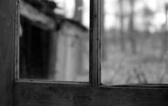 (toulouse goose) Tags: film kodak tmax 100 35mm canon eos elan7 ef50mm18 blackandwhite d76 epson v500 old window