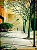 bike rack (johngpt) Tags: trees bicycle sidewalk tree bush johnslensdcfilmnoflashpostprocessed window outsidework appleiphone7plus bikerack places hipstamatic albuquerque newmexico unitedstates us sliderssunday hss