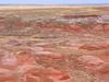 2018 04 23 Nature's painting at the Painted Desert NP (Geoff Bowers1) Tags: painteddesert redrocks arizona