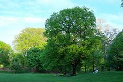 New York - Brooklyn - Prospect Park (cinxxx) Tags: america amerika nyc newyork newyorkcity sua stateleunitealeamericii us usa unitedstates unitedstatesofamerica vereinigtestaaten vereinigtenstaatenvonamerika