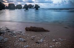 "Martin's Bay 5 (notnA) Tags: seascape ""seascape photography"" ""long exposure ""martin's bay"" barbados martins bay east coast"